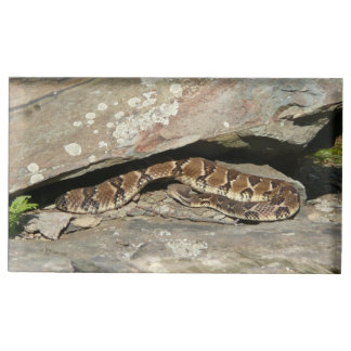 Rattlesnake at Shenandoah National Park Table Card Holder