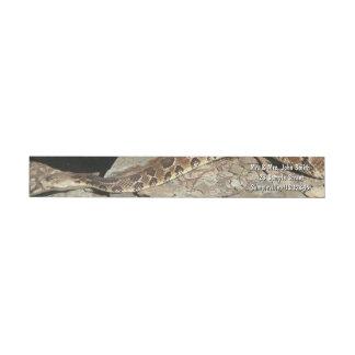 Rattlesnake at Shenandoah National Park Wrap Around Label