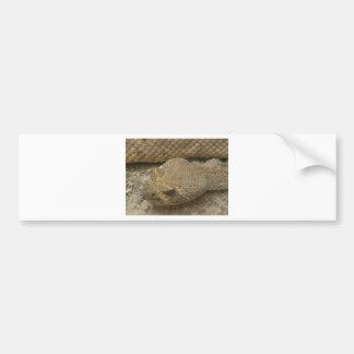 Rattlesnake Bumper Sticker