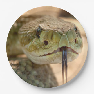 Rattlesnake Closeup Photo Paper Plate