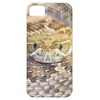Rattlesnake face iPhone 5 case