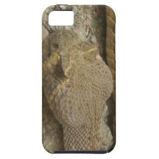 Rattlesnake iPhone 5 Case