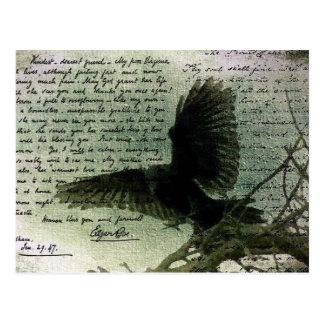 Raven 3 postcard