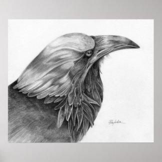 Raven Afternoon Print