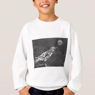 Raven and Moon Sweatshirt