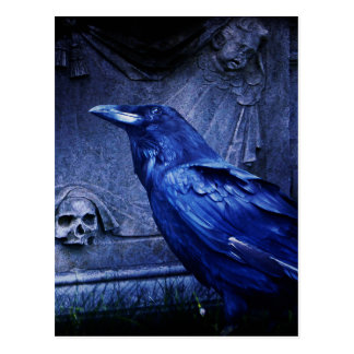 Raven At Tombstone Postcard
