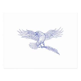Raven Carrying Quill Drawing Postcard
