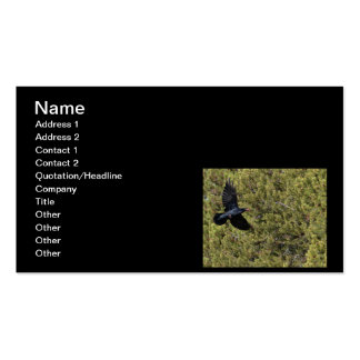 Raven Delivery Business Card Template
