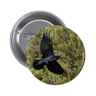Raven Delivery Buttons