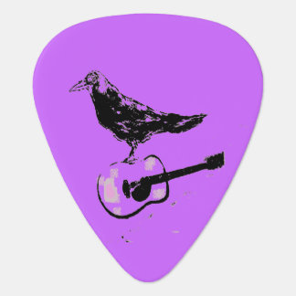 raven guitar song plectrum
