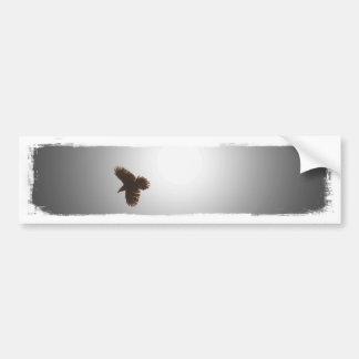 Raven in Flight Car Bumper Sticker