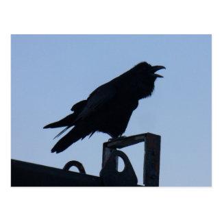 Raven in Silhouette, Unalaska Island Postcard