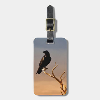 Raven on Sunlit Tree Branches, Grand Canyon Luggage Tag