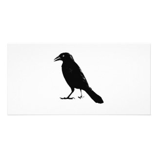 Raven Photo Card Template
