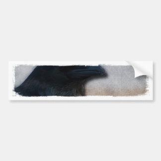 Raven Portrait Bumper Stickers