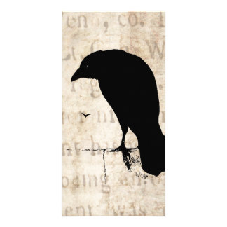 Raven Silhouette - Vintage Retro Ravens & Crows Photo Cards