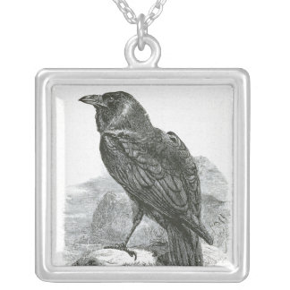 """Raven"" Silver Plated Necklace"