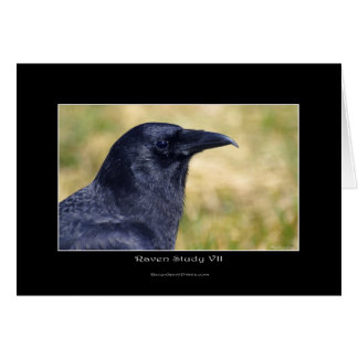 RAVEN STUDY Collection Card