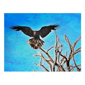 Raven tree postcard