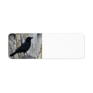 Raven Waiting Return Address Label