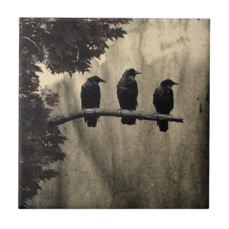 Ravens Perched Small Square Tile