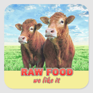 RAW FOOD we like it Square Sticker