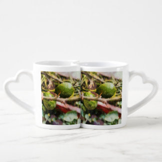 Raw lemons and spikes lovers mug set