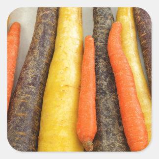 Raw Purple Yellow and Orange Carrots Square Sticker