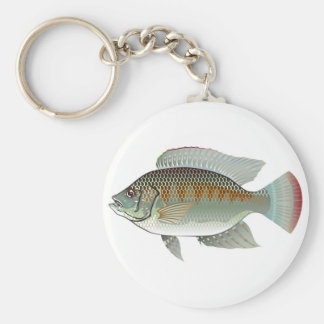 Raw Seafood Tilapia Fish Vector Key Ring