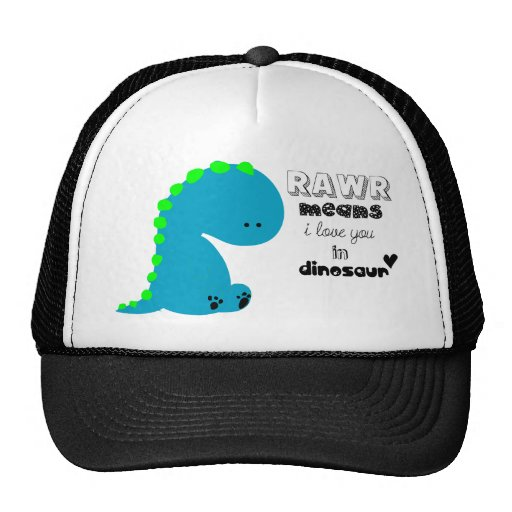 Rawr Means I love you in DINOSAUR shirt Hat