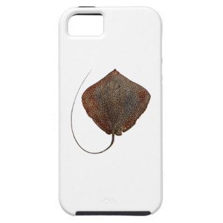 RAY OF LIFE TOUGH iPhone 5 CASE