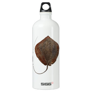 RAY OF LIFE WATER BOTTLE