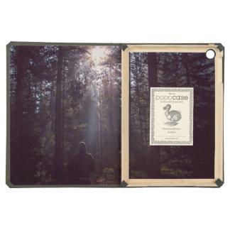Ray of light case for iPad air