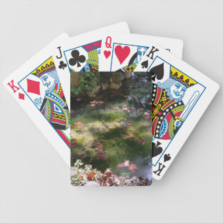 rays and leaves on water bicycle playing cards