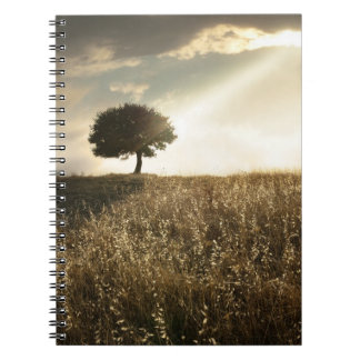 Rays of light break through the dramatic sky spiral note book