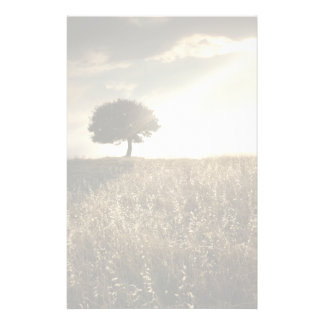 Rays of light break through the dramatic sky stationery