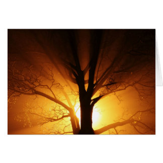 Rays Of Light Note Card