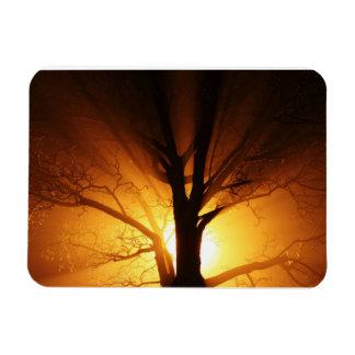 Rays of Light Premium Magnet