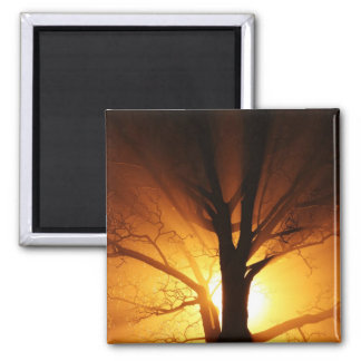 Rays Of Light Square Magnet