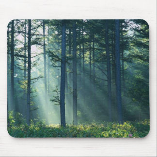 Rays Of Light Through Trees Mouse Pad