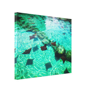 Rays Spot Canvas Print