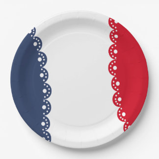 Razzle Dazzle July 4th Party Paper Plates