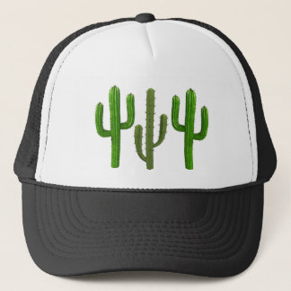 Reach for the Sky Trucker Hat