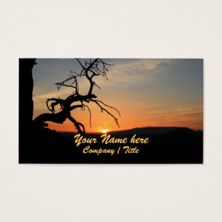 Reaching for the Sun Business Card