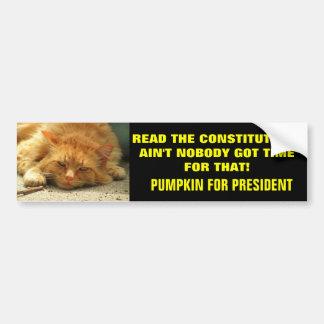 Read the Constitution? Ain't Nobody.... Bumper Sticker
