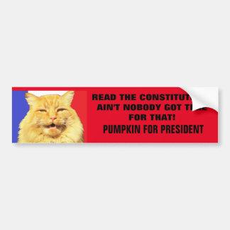Read the Constitution? Ain't Nobody....Pumpkin Bumper Sticker