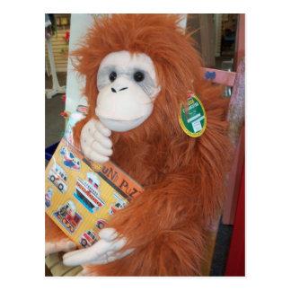 Reading Orangutan Postcard