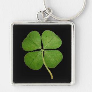Real 4 Leaf Clover Shamrock Black Key Ring