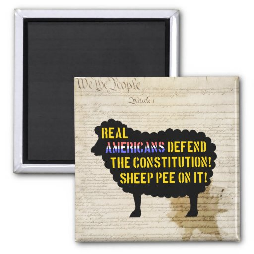 Real Americans Defend the Constitution... magnets