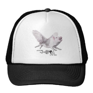 Real Flying Pig Popular Gift When Pigs Fly w Wings Cap